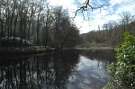 River Dart at Hembury Wood, Devon