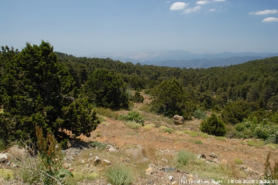 View from Mount Olympus, Troodos, Cyprus