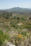 Troodos Views, Cyprus