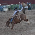 Rodeo at Jackson, Wyoming