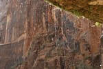 Weeping Rock, Zion National Park, Utah
